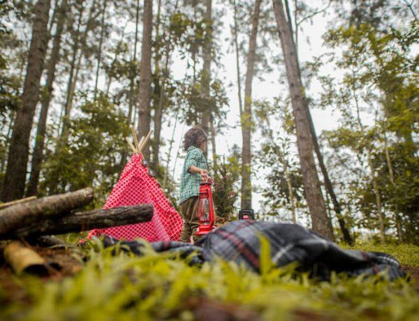 Übernachten im Wald Mikroabenteuer